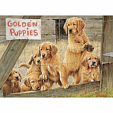 Golden Puppies - 500 Piece